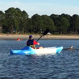 Kayak Tours & Rentals